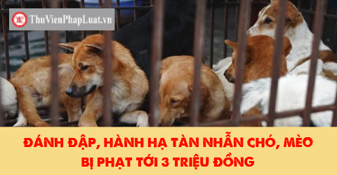 hành hạ chó mèo có thể bị phạt tới 3 triệu đồng
